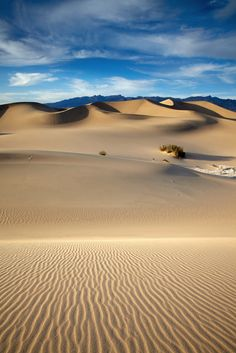 Find high-quality images, photos, and animated GIFS with Bing Images Deserts Of The World, Desert Dream, Death Valley National Park, California National Parks, Mongolia, Landscape Photos, Natural Wonders, Natural World, Wonders Of The World