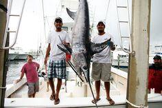 Destin Charter Fishing