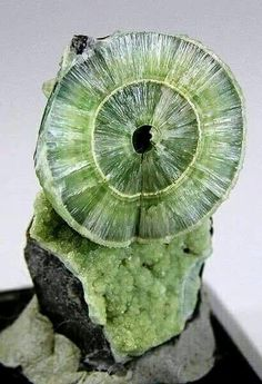 Wavellite --- Mauldin Mt., Montgomery Co., Arkansas, USA