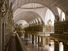 Bats live in this library  at night eat insects that would feast on the book pages! Biblioteca Joanina and the Mafra Palace Library in Portugal