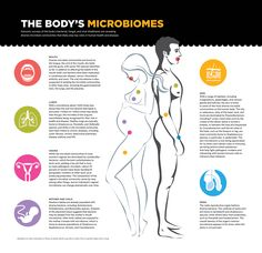 The Body's Microbiome: Genomic surveys of the body's bacterial, fungal, and viral inhabitants are revealing diverse microbial communities that likely play key roles in human health and disease. #Infographic #Microbiome