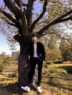 Kim Min, Trunks, Pop, Drift Wood, Popular, Pop Music