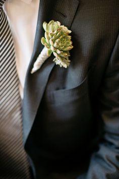 striped tie and mini succulent
