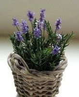 lavender tutorial, I loved this blog on miniatures, especially on making lavender as it grows here and we even have an annual Lavender Festival.