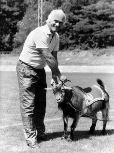 Auch der Geißbock gehorchte ihm: Von 1987 bis 1991 arbeitete Lattek als Sportdirektor beim 1. FC Köln, in dieser Zeit saß er auch als Interimstrainer auf der Bank.