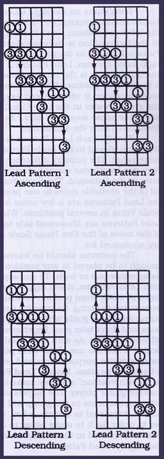 Learning Guitar: Pentatonic Scales and Lead Patterns Caged Horizontal scales Music Theory Guitar, Jazz Guitar, Music Guitar, Playing Guitar, Learning Guitar, Ukulele, Guitar Store, Piano Music, Guitar Chords And Scales