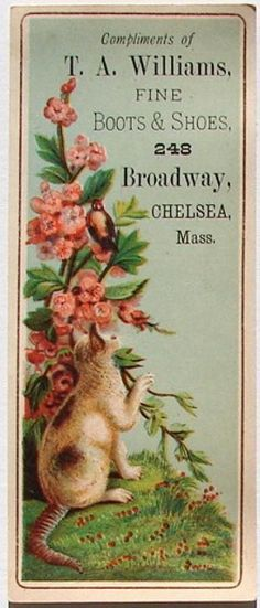 T A WILLIAMS SHOES Vintage Victorian Trade Card, TC372