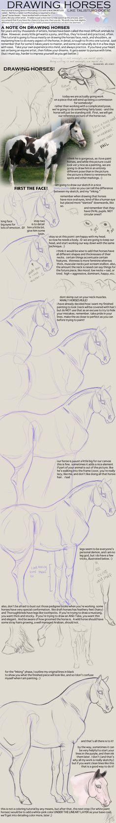 How to Draw Realistic Horses by Talisturo.deviantart.com on @deviantART