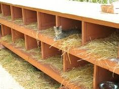 Pet DIY Shelter Cats Pallets Recycle Feral Cat Shelter, Cat Shelters, Feral Cats, Outside Cat House, Cat House Diy, Outdoor Shelters, Cat Enclosure, Cat Houses, Alley Cat
