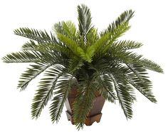 Cycas Artificial Silk Plant with Hexagon Planter | 15 inches