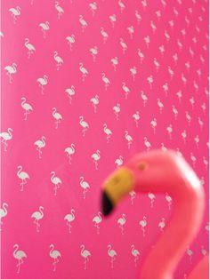 Papier peint Flamingo rose à motif famants rose !