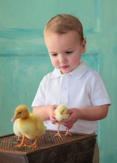 Yes- These #Chickens Are All Mine!