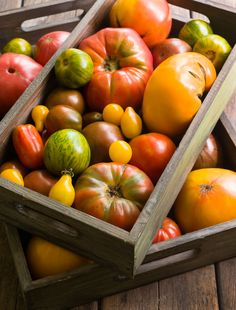 Heirloom Tomatoes | Minimally Invasive
