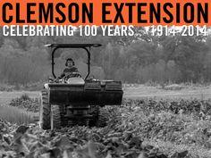 Students at the Clemson Student Organic Farm. Photographer: Peter Tögel. #ClemsonExt100