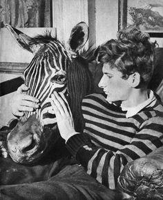 Lucien Freud [accordingly dressed] with zebra's head :: ca. 1943 [Modern Tate]