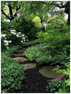 Urban Garden Design shade garden by MyohoDane Amazing Gardens, Beautiful Gardens, Gray Gardens, Unique Garden, Natural Garden, The Secret Garden, Woodland Garden, Garden Cottage, Garden Living