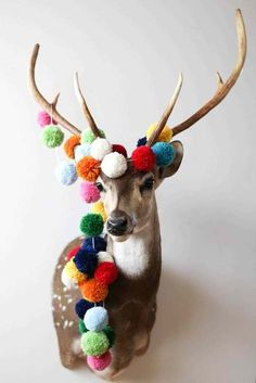 An awesome deer head adorned with colorful pom poms. Such a cool idea!