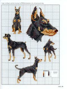 Gallery.ru / Photo # 27 - Picture Your Pet in Cross Stitch - patrizia61