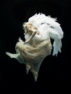 "Saatchi Online Artist Zena Holloway; Photography, ""Angel 9 (edition of 10 + 2 artists proofs)"" #art"
