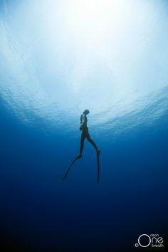 ... The Ballet Dance ... Freediving - Photo taken on one breath by Christina Saenz de Santamaria. #freediving #underwater #1ocean1breath #ocean #oneoceanonebreath
