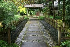 japanese garden pathway. Pathway from front door