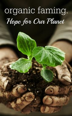 It's time to get back to the roots of farming to save the planet. #GO #Organic at www.IndiaGoesOrganic.com