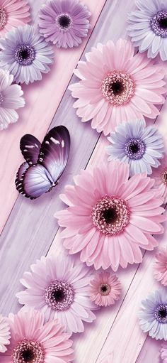 Flowery Wallpaper, Flower Background Wallpaper, Flower Phone Wallpaper, Cute Wallpaper For Phone, Heart Wallpaper, Butterfly Wallpaper, Cute Wallpaper Backgrounds, Colorful Wallpaper, Love Wallpaper