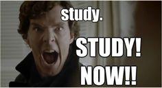 from benedict--cumberb. Informations About from benedict--cumberb. Pin You can easily use my pro Sherlock Fandom, Sherlock Quotes, Sherlock John, Sherlock Holmes, Sherlock Comic, Medical Memes, Benedict Cumberbatch Sherlock, 221b Baker Street, Johnlock