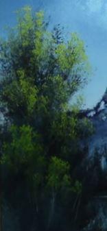 Dessin et peinture - vidéo 1919 : Comment peindre, tout en volume, le feuillage des grands arbres et des buissons ? Peinture à l'huile ou acrylique.