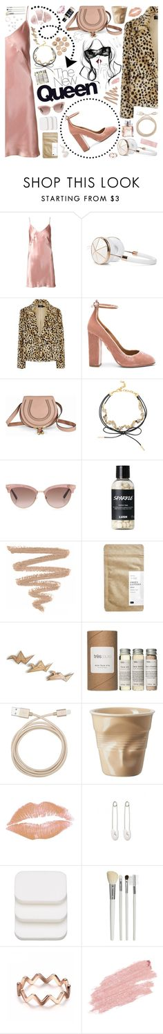 """""""I'm back..."""" by jennn ❤ liked on Polyvore featuring Fleur du Mal, Frends, Aquazzura, Chloé, Masquerade, BaubleBar, Christian Dior, Gucci, Paper & Tea and Très Pure"""