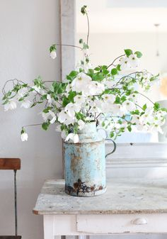 Dogwood in chippy aqua pitcher.