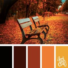 Fall Colors palette brown color-palettes-beautiful-landscapes - Sarah Renae Clark - Coloring Book Artist and Designer Fall 2017 Colors, Fall Color Schemes, Orange Color Schemes, Black Color Palette, Color Schemes Colour Palettes, Orange Color Palettes, Colour Pallette, Color Combinations, Color Trends