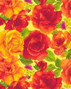 Rosa - Summer's Radiant Rose - Lemon Yellow