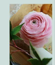 #ranunculus #sugarflower #gumpaste #flower #sugarcraft #korea #sugarazalea