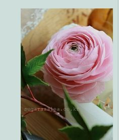 #ranunculus #sugarflower #gumpaste #flower #sugarcraft #korea #sugarazalea