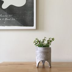 Beautiful planter by Tamago Ceramics. pottery