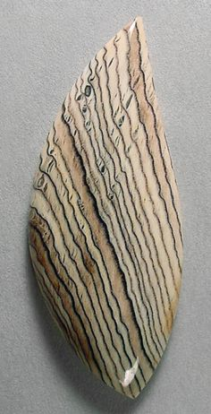 Ring Cabochon Hells Canyon Herringbone Petrified Wood Handcrafted USA Natural Gemstone.
