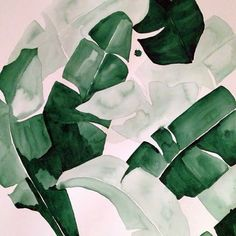 "20 x 30 ""Beverly III"" Tropical Banana Palm Leaves Watercolor Giclee Fine Art…"