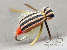Striped beetle (Brown-Black) D-112