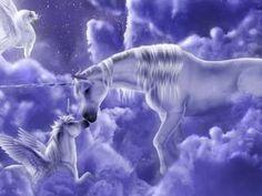 images of unicorns and pegasus Fantasy Unicorn, Unicorn And Fairies, Unicorns And Mermaids, Unicorn Art, Magical Unicorn, Baby Unicorn, White Unicorn, Unicorn Images, Unicorn Pictures