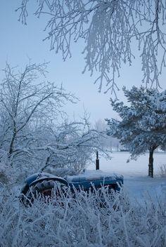Winter on the Farm <3