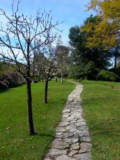 El camino - Sigue siempre tu camino y no temas su final; lo mejor está siempre por llegar.