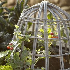 Willow Cloches, Set of 2 | Williams-Sonoma