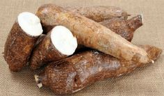 Cassava, or manioc, also known by its scientific name of Mahinot esculenta, is a exotic plant that originated from the South American areas