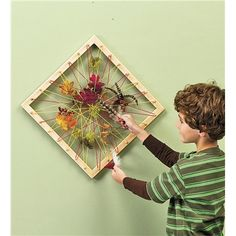 Nature Collage Wooden Art Frame with Sturdy Hemp String