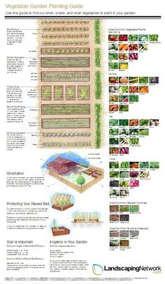 This handy vegetable garden planning guide from LandscapingNetwork.com offers helpful tips on planting a successful edible garden.