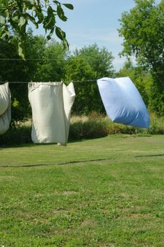 """""""The wonders of sun and wind. How lucky I am to have a clothesline.""""    June 30 - Shannon - Canada"""
