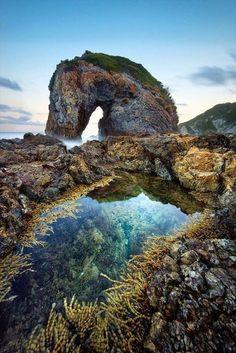 Sea Horse: monumental Rocky beach landscape, Camel Rock, Berguami, Australia    unknown