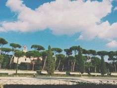 #trees #rome #villaborghese
