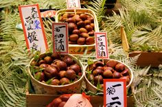Matsutake Mushroom at Kyoto Specialty Vegetable Store Toriichi Shinise (京特産 とり市老舗 松茸)